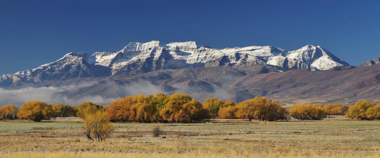 <center>DaleTax - Utah Valley's Premier Tax Accountants</center>